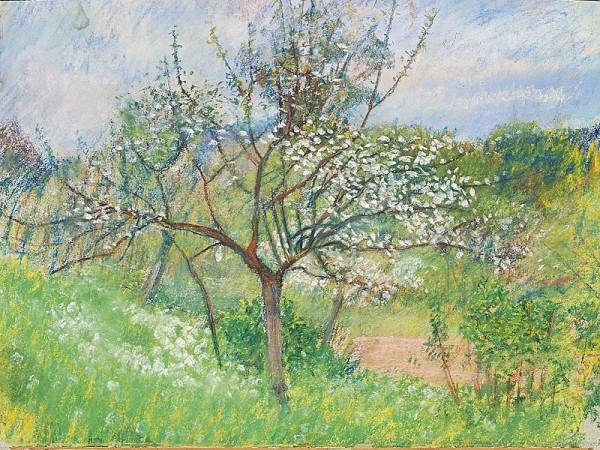 Margita Czóbelová, Rozkvitnutý strom v parku