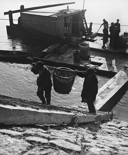 Štefan Tamáš, Danube Fishermen I.