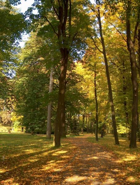 Súkromný archív KK 1-5, Strážky na jeseň (park a kaštieľ)